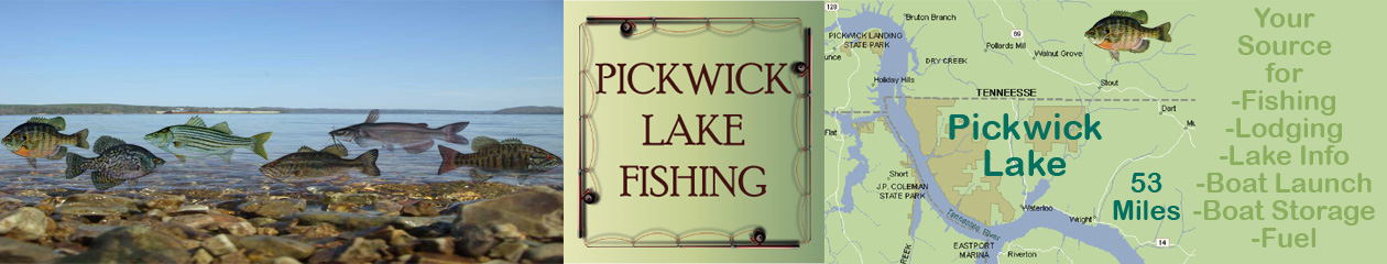 Pickwick lake fishing for Pickwick lake fishing report